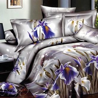 Комплект постельного белья Tango cs742