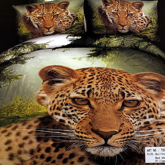 Комплект постельного белья Tango cs762
