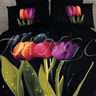 Комплект постельного белья Tango cs269