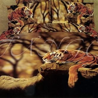 Комплект постельного белья Tango cs534