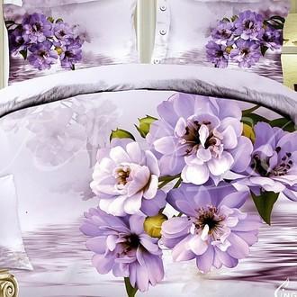 Комплект постельного белья Tango ts879