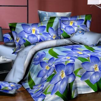 Комплект постельного белья Kingsilk PL-10
