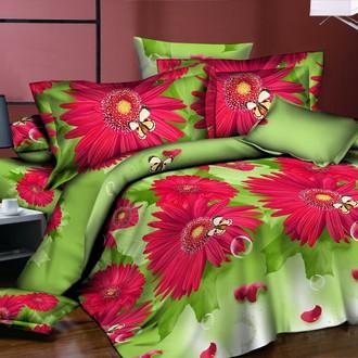 Комплект постельного белья Kingsilk PL-25