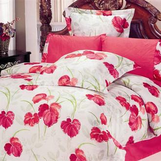 Комплект постельного белья Le Vele LUCIA