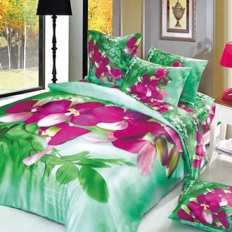 Комплект постельного белья Cleo S-438