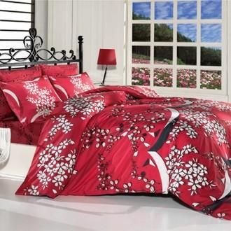 Комплект постельного белья Altinbasak HANA
