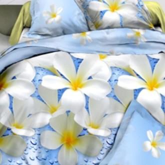 Комплект постельного белья Cleo B-330