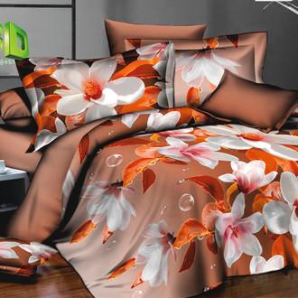 Комплект постельного белья Cleo PP-173 поплин