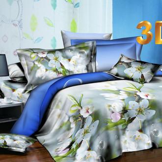 Комплект постельного белья Cleo SL-003 сатин