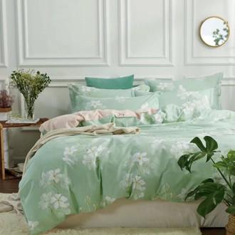 Комплект постельного белья Tango TPIG-656 хлопковый твил