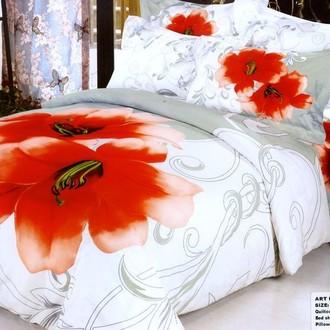 Комплект постельного белья Tango TS-126/2 хлопковый сатин