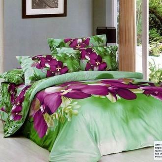 Комплект постельного белья Tango TS-823 хлопковый сатин
