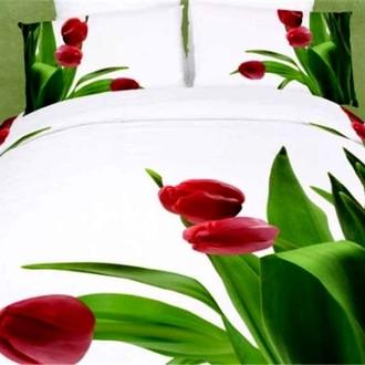 Комплект постельного белья Tango TS-FS793 хлопковый сатин