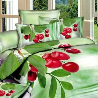 Комплект постельного белья Tango TS-062/1 хлопковый сатин