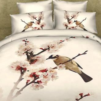 Комплект постельного белья Tango TS-81 хлопковый сатин