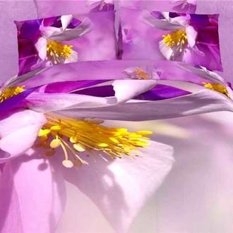 Комплект постельного белья Tango TS-FS812 хлопковый сатин