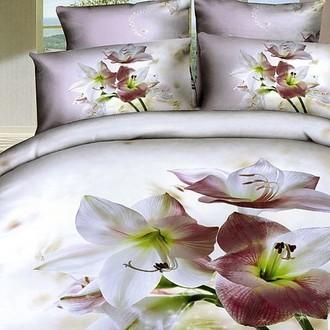 Комплект постельного белья Tango TS-959 хлопковый сатин