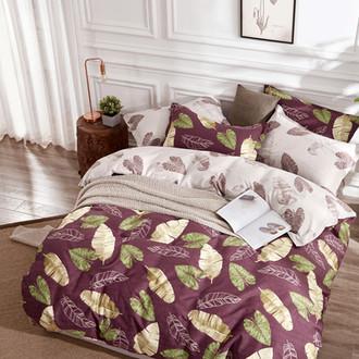 Комплект постельного белья Tango TPIG-167 хлопковый сатин