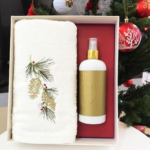 Полотенце в подарочной упаковке + спрей Tivolyo Home ELDEN хлопковая махра 50х100