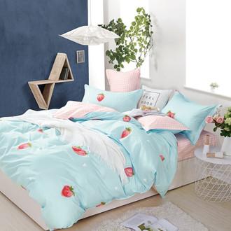 Комплект постельного белья Tango TWILL 511 хлопковый сатин