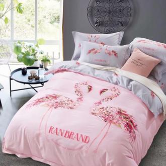 Комплект постельного белья Tango MOMAE17 хлопковая фланель