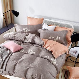 Комплект постельного белья Tango MOMAE42 хлопковая фланель