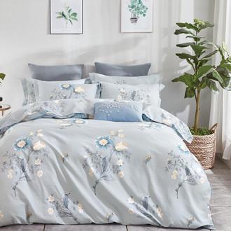 Комплект постельного белья Tango MOMAE32 хлопковая фланель