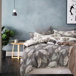 Постельное белье Tango TWILL 438 хлопковый сатин 2-х спальный (нав. 70х70)