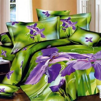 Комплект постельного белья Tango ts826
